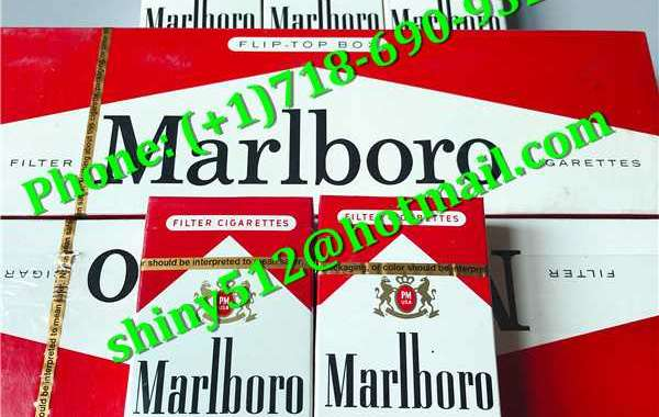 Cheap Newport Cigarettes Wholesale thickened